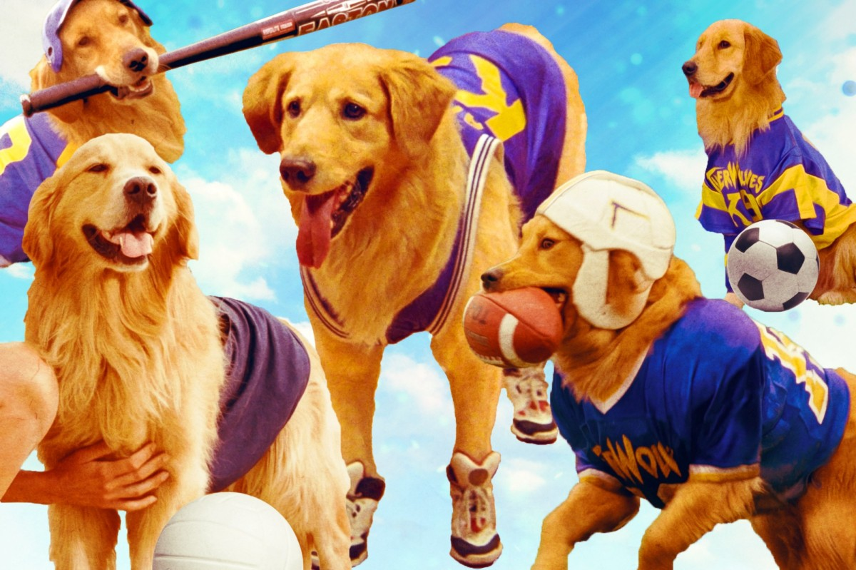 BTBspiracies: Was Air Bud Too Good to Be True?